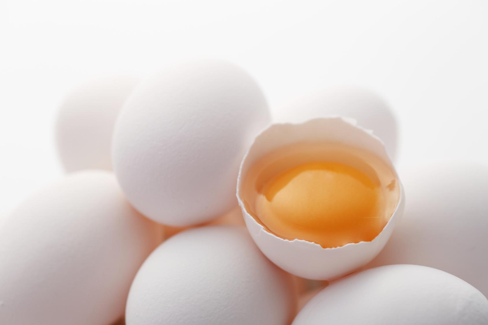 タンパク質 生 卵