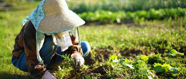 農家の課題を解決