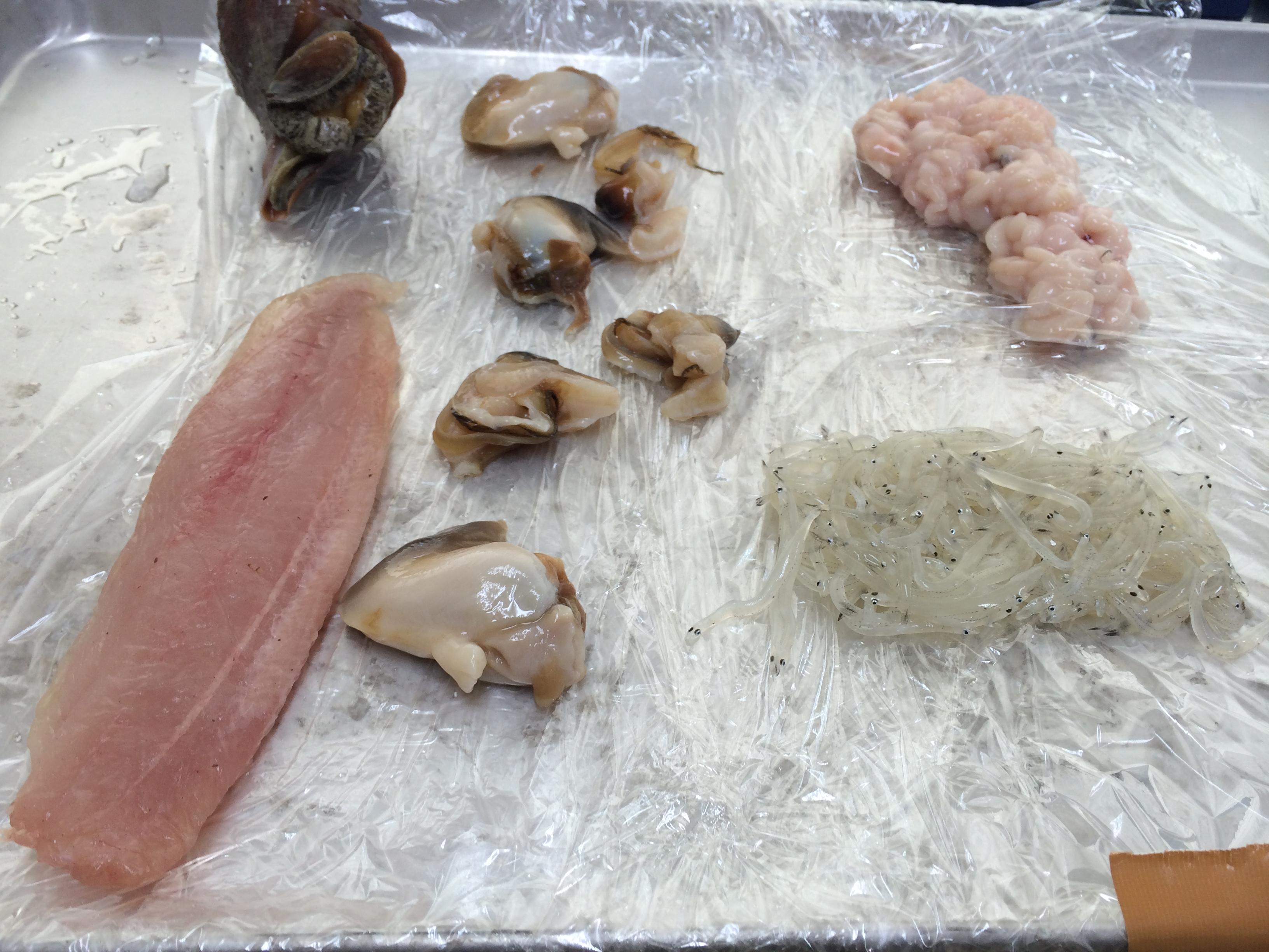 海産物凍結前