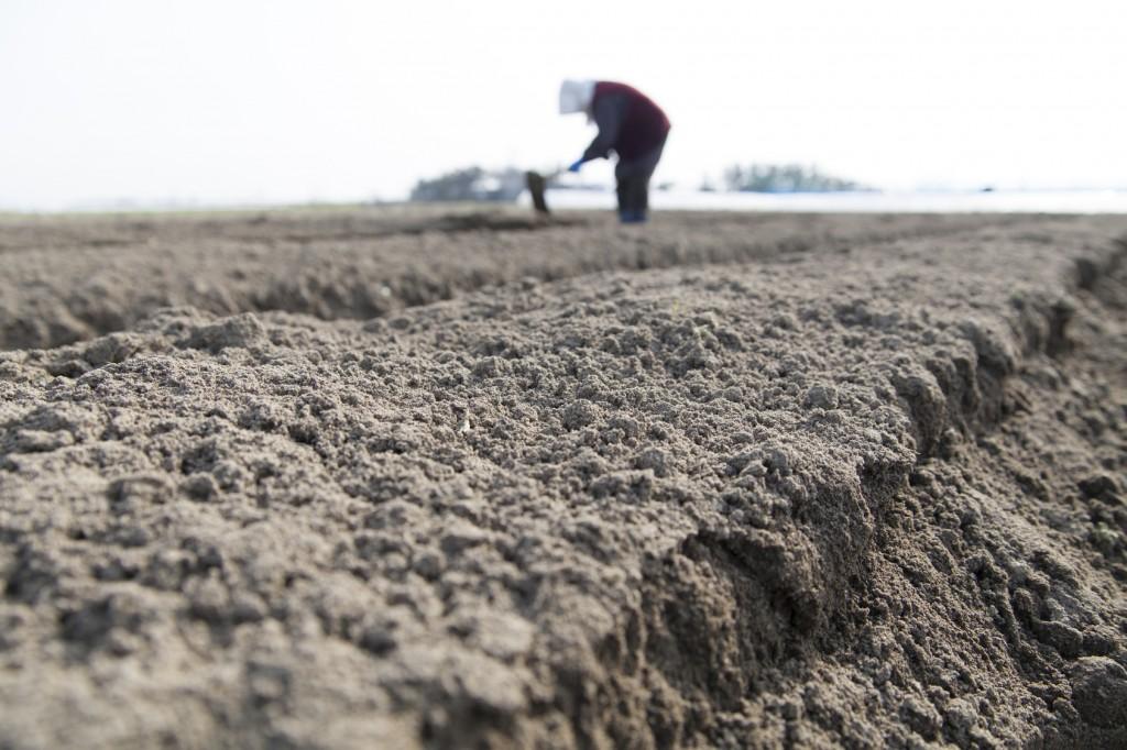 農業の課題