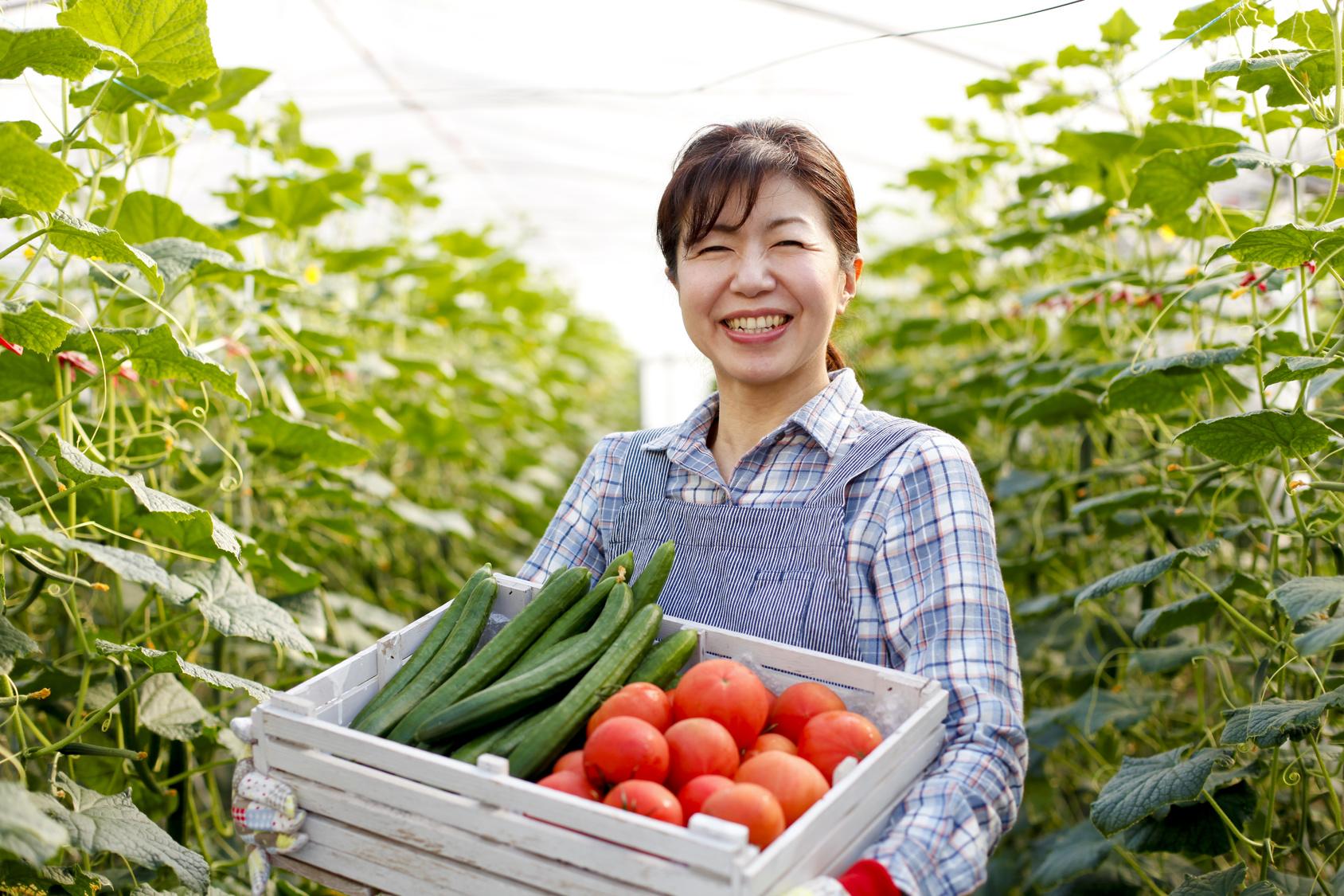 農家の課題