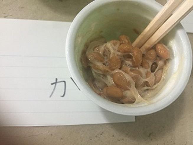緩慢冷凍された納豆